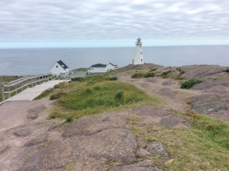 Cape Spear (16)