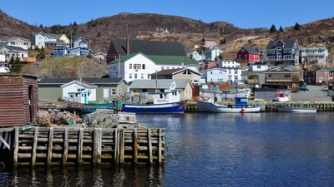 Petty Harbour 2